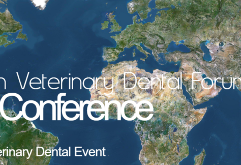 European Veterinary Dental Forum Virtual Conference