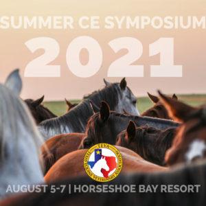 2021 Summer CE Symposium
