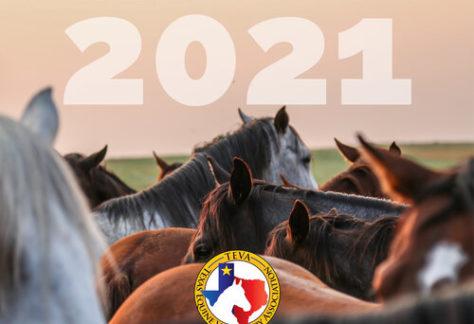 CE Symposium Été 2021
