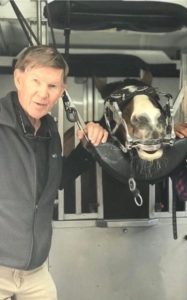 Richard Miller DVM ambulatory equine dentistry clinic